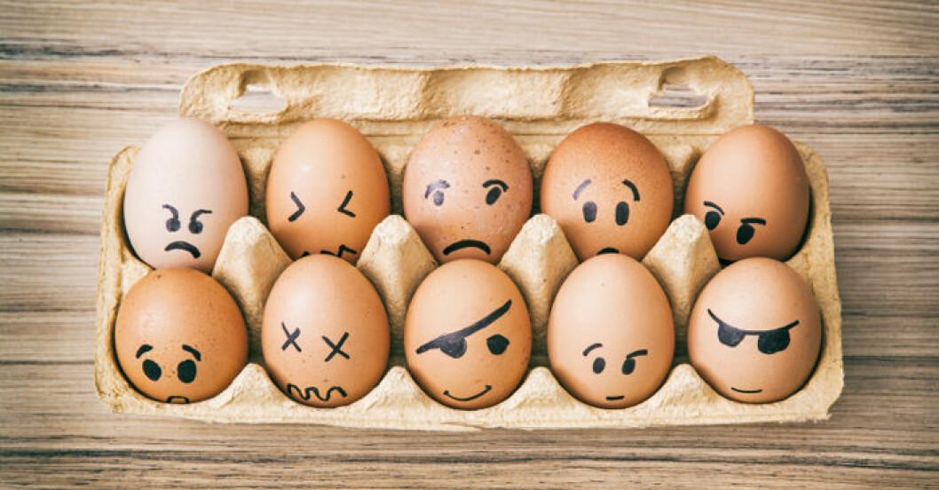 Laga mat och baka utan ägg!