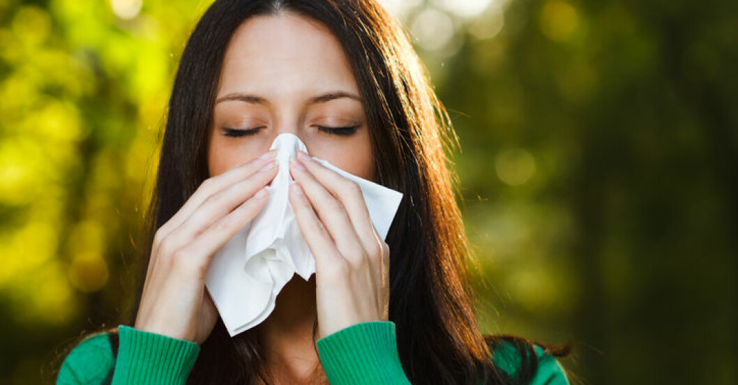 Vanor som gör allergi värre.
