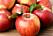 livsmedel äpplen