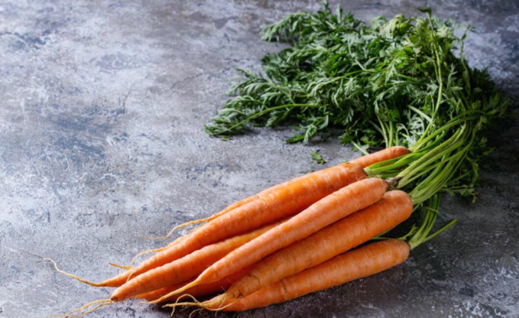 Återodla grönsaker. Morotsblast går utmärkt att återodla i vatten.
