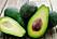 livsmedel avokado