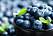 livsmedel blåbär