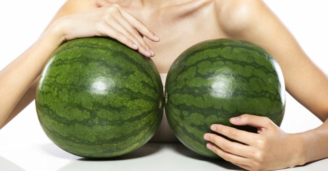 stora bröst – meloner