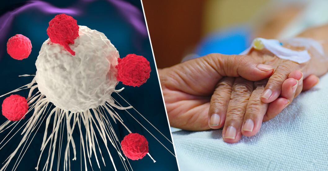 Delad bild: En t-cell angriper en cancercell, någon håller handen på en sjuk människa