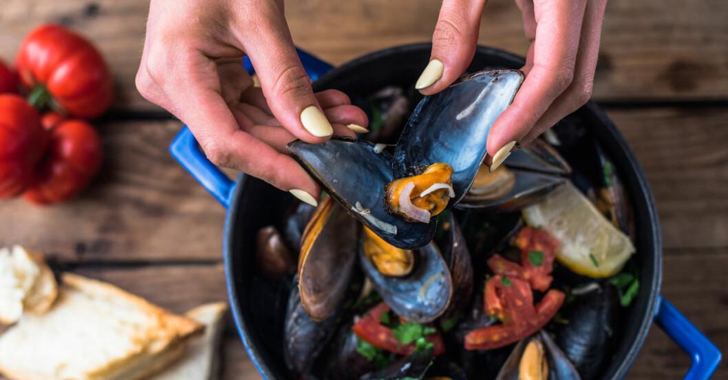 Kvinnohänder plockar upp musslor i skal ur blå kastrull