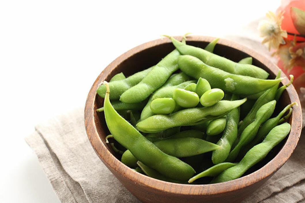 edamame-beans-protein-mabra