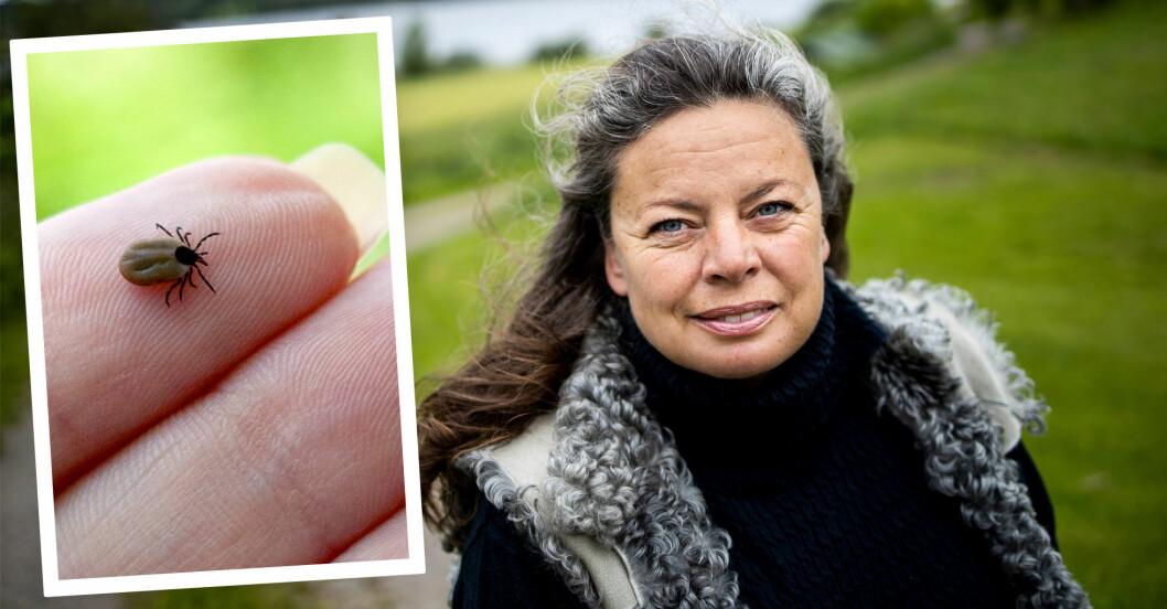 Bild på kvinna med långt grått hår i naturen, infälld bild på fästing på finger