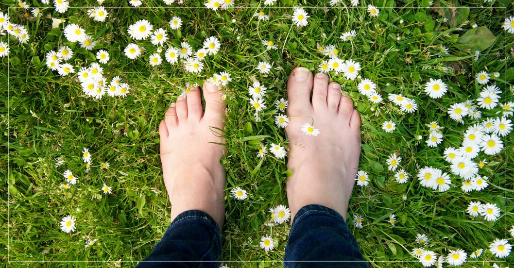 Kvinna går barfota i gräset