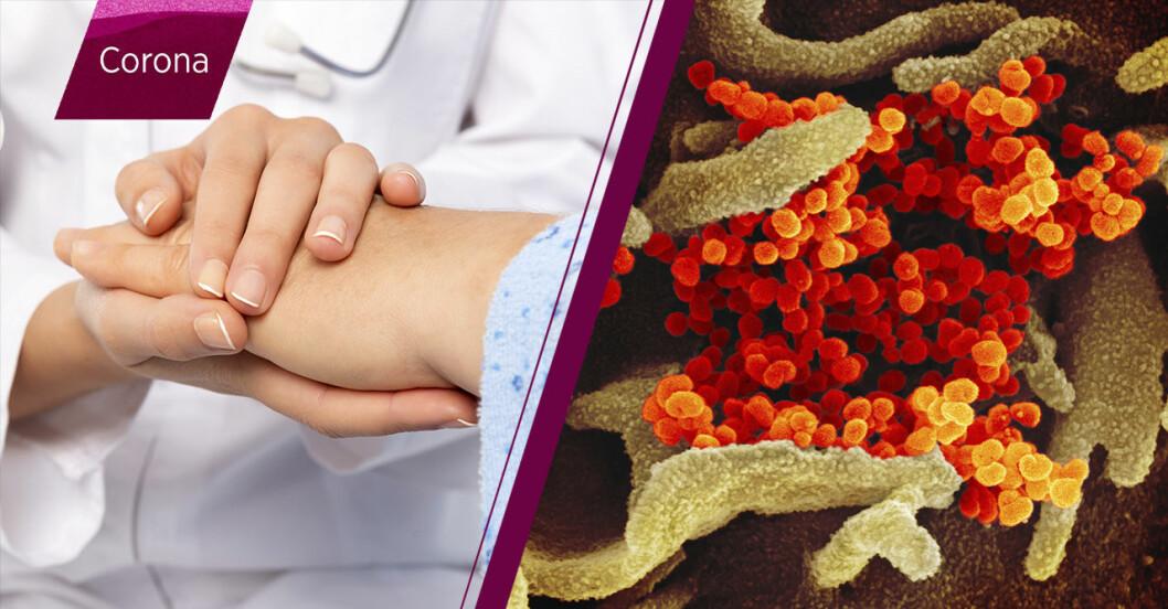 Coronaviruset - hur många har blivit friska?