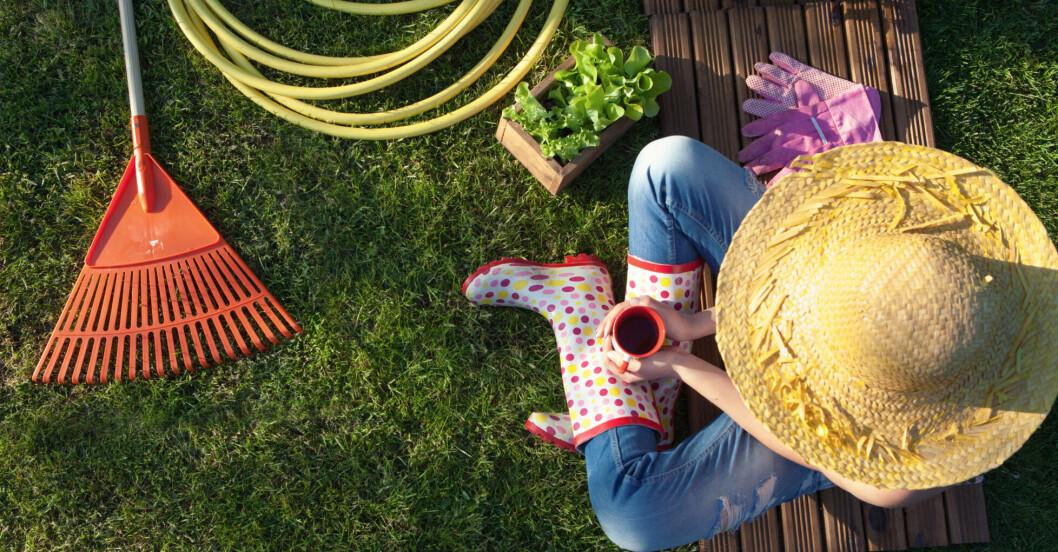 Nu är det vår och dags för trädgårdsarbete