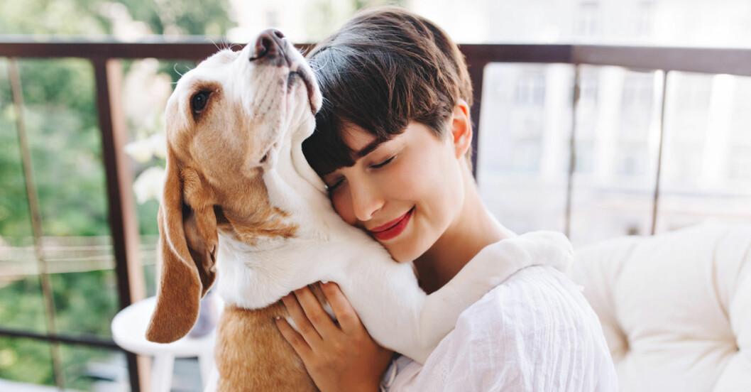 Att ha hund kan ge hälsoeffekter!