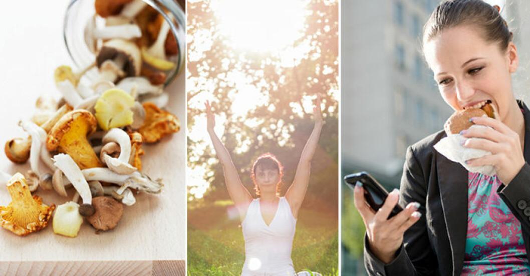 svamp, kvinna som yogar och kvinna som äter en smörgås och tittar i mobilen