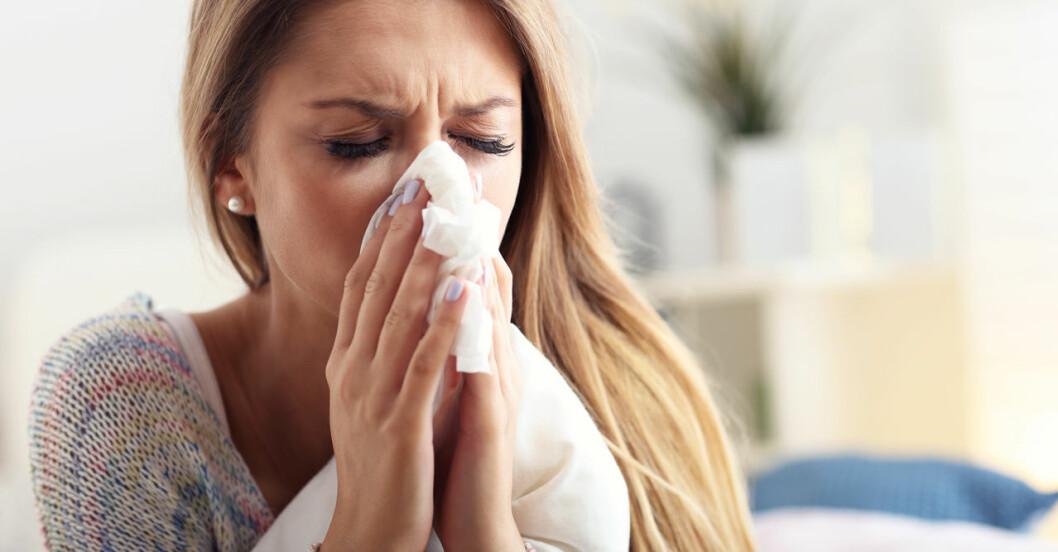Kronisk snuva kan bero på allergi, polyper eller stress.