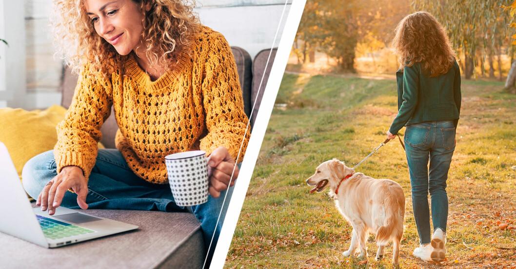 Kvinna sitter stilla vid datorn för att sedan ta en promenad med hunden.