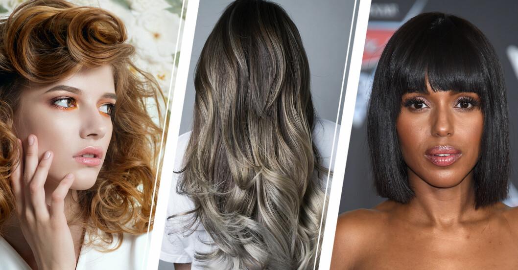 Lockigt i varma toner, vågigt hår i askiga nyanser och svart kort bob är hårtrenderna som gäller 2021.