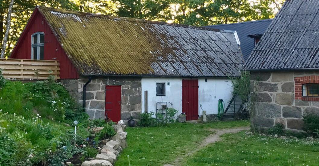 Nyrenoverat höloft i Lund