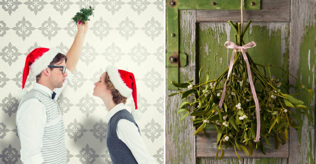 Varför pussar eller kysser man någon under en mistel vid jul?