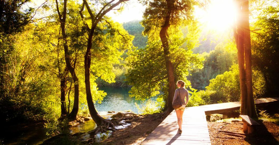 Lukta på naturen och stressa ner.