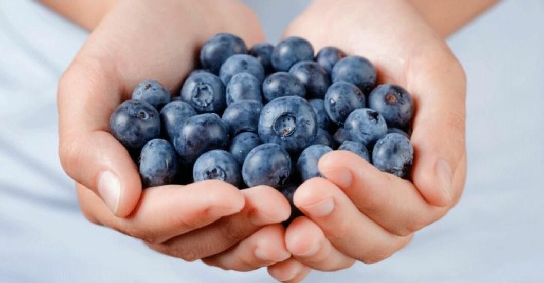 Bli smalare med blåbär.