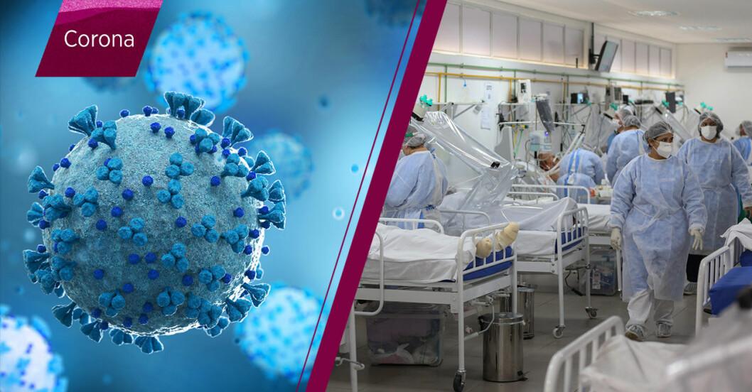 Ny virusvariant i Brasilien.