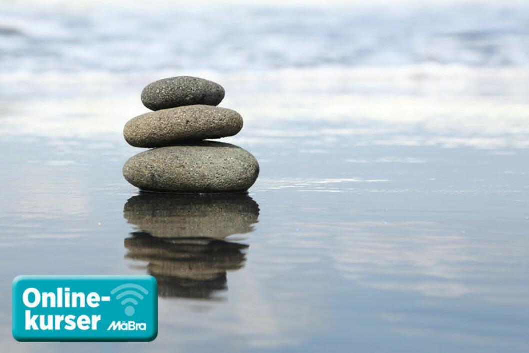 Testa vår kurs: Stressa ner – lev mer!