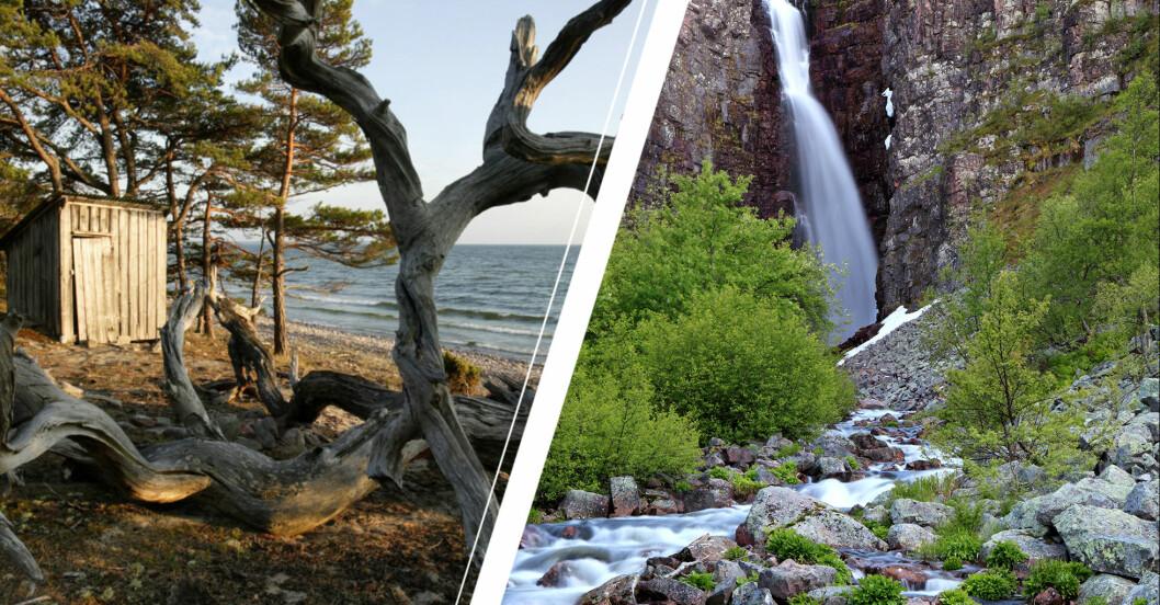 Trollskogen, Öland och Njupeskär vattenfall