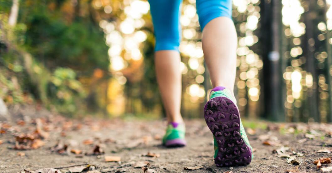 30 minuters promenad om dagen kan göra all skillnad.