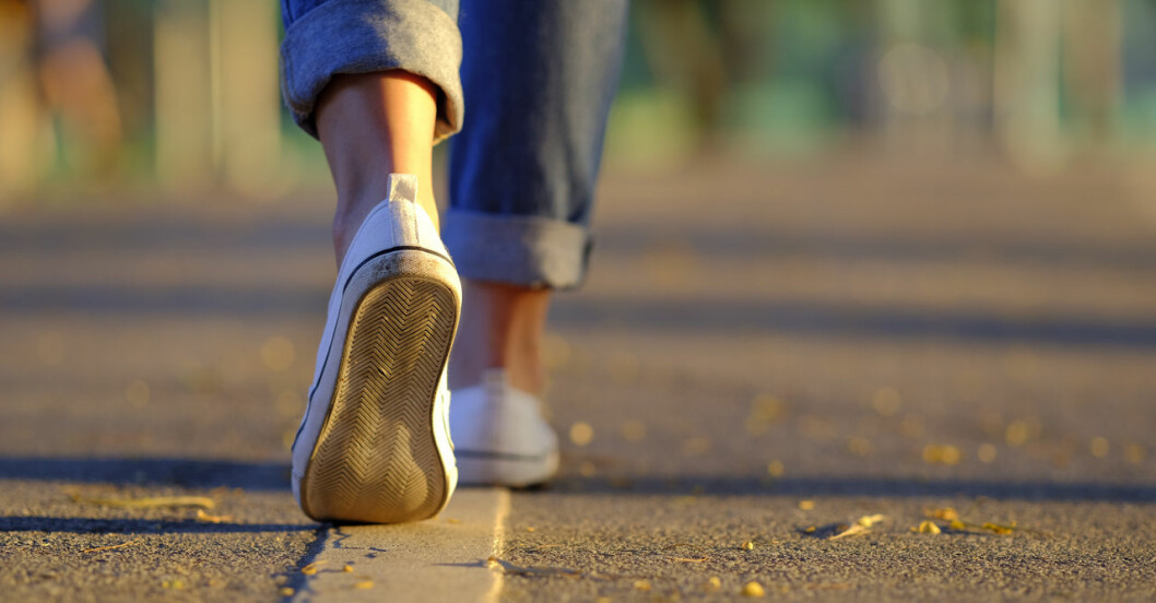 Promenad-schema