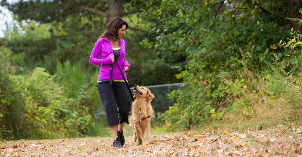 Promenader kan förebygga många sjukdomar