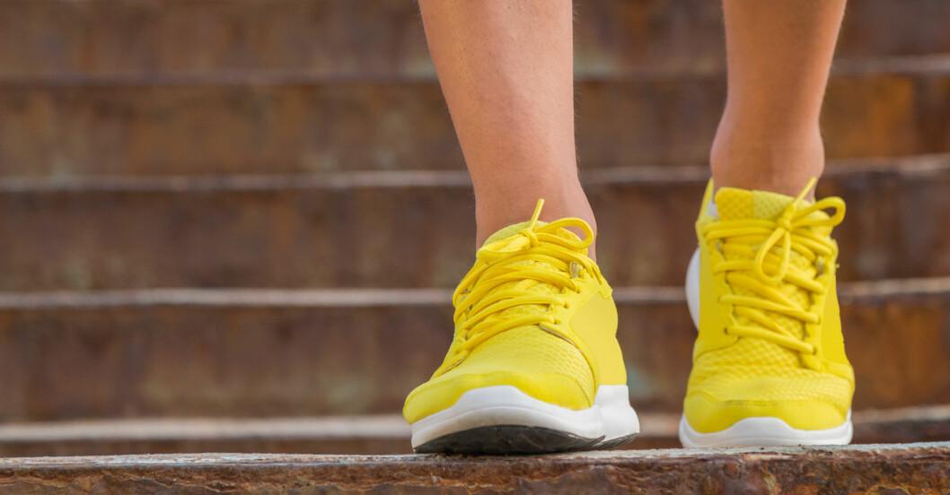 promenerar sin dagliga promenad - 30 minuter räcker att träna