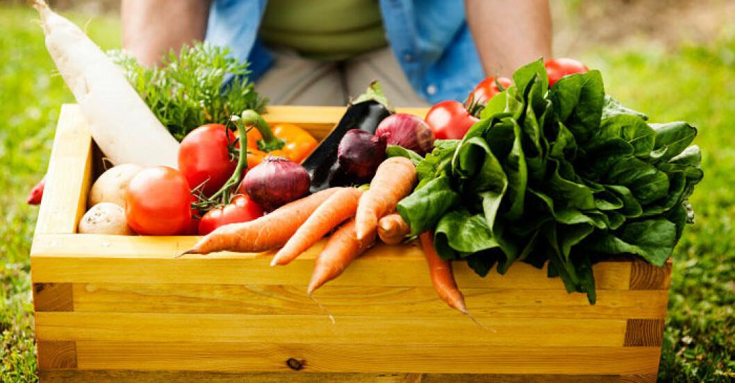 låda med rotfrukter och grönsaker