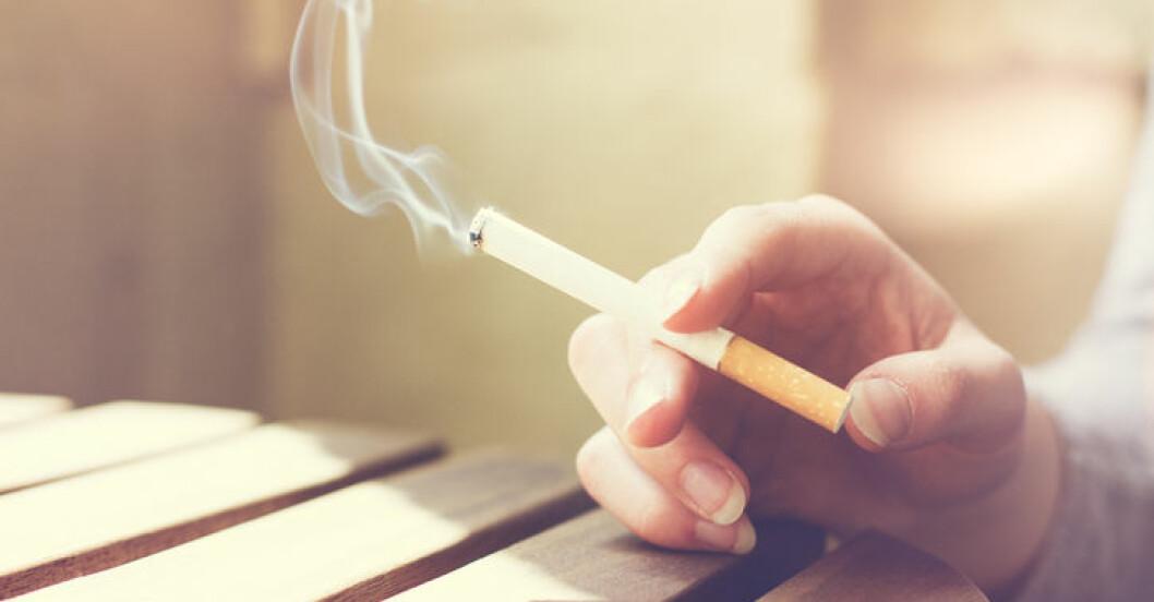 Rökning dödar allt fler.