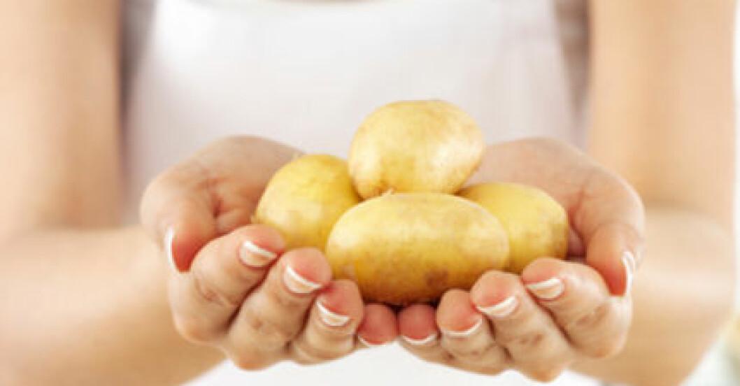 Kokt och avsvalnad potatis är ett bättre alternativ än skalad och varm. I alla fall om du är på jakt efter resistent stärkelse.