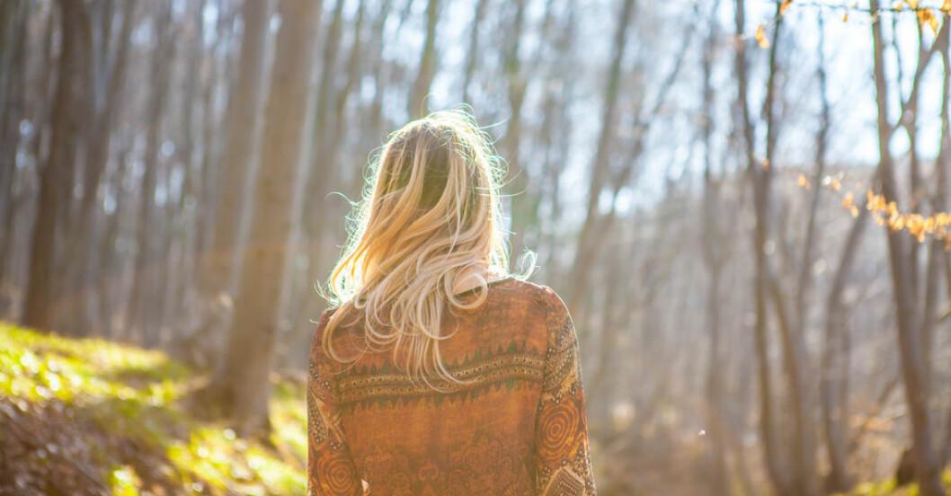 Shinrin-yoku påminner lite om mindfulness – fast i skogen.