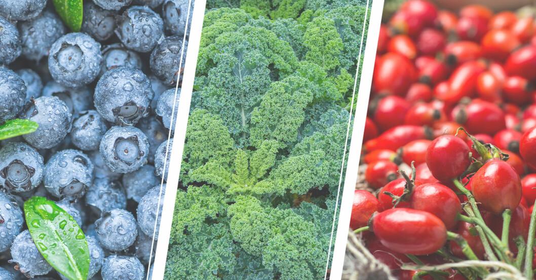 svensk supermat blåbär, grönkål, nypon
