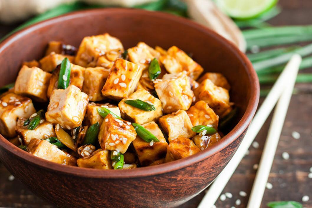 tofu-protein-mabra