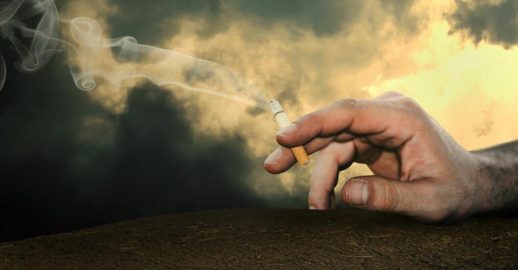 Uddevalla förbjuder rökning på arbetstid.