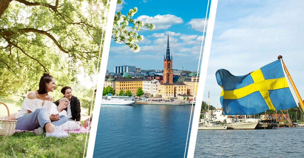 tips på utflykter och roliga endagsaktiviteter i stockholm