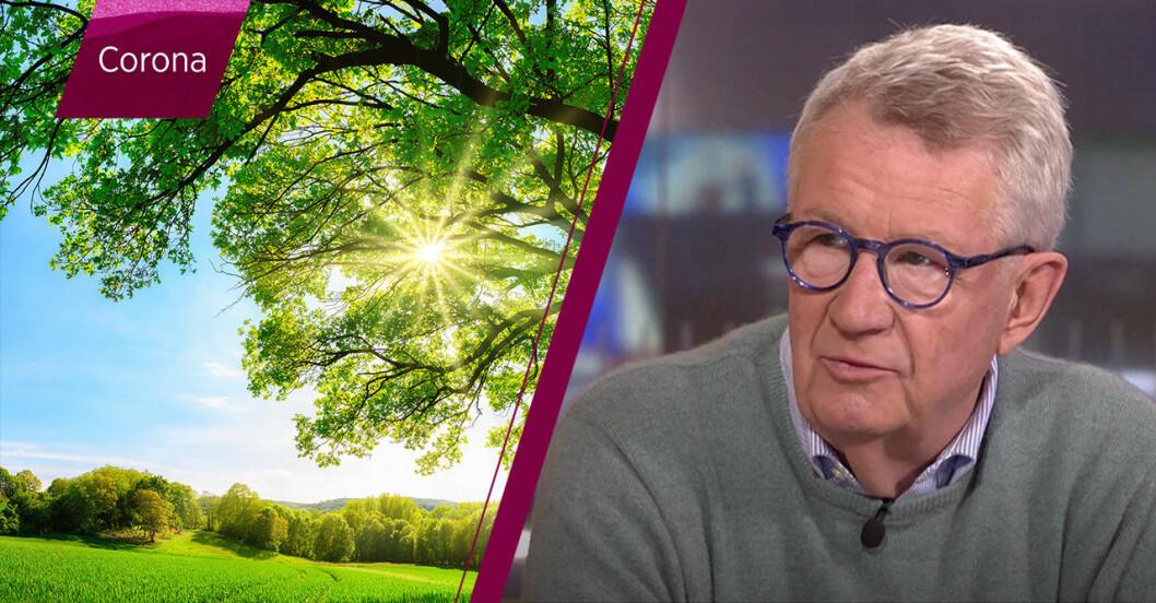 Johan Gisecke i SVT.