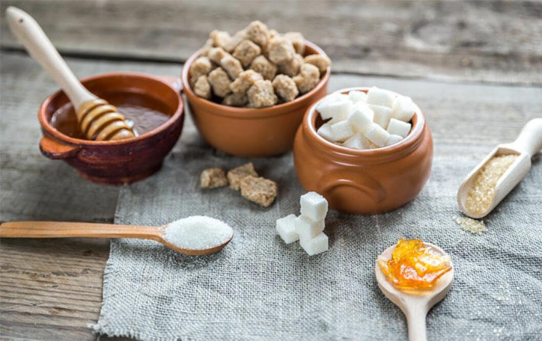 vitt-socker-honung-kokossocker-agavesirap-stevia